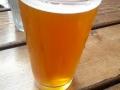 portland-beer-jpg